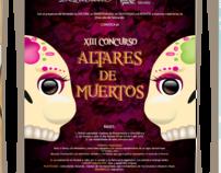 Universidad La Salle Morelia:  Serie de Carteles