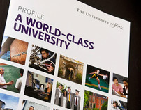 Profiling a World Class University