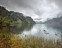 Parque Futangue. Lago Ranco #futanguechallenge