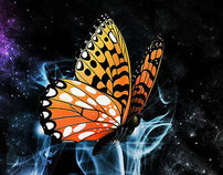 Orange Buterfly