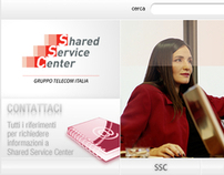 Shared Service Center, Institutional website - 2009