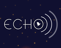 Echo Branding and UI (2017)
