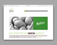 Inicia - Website Design
