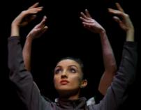 Ballet David Campos - WIP (2010)