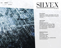 Silvex - Visual Prototype of new website