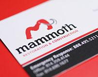 Mammoth Restoration & Construction
