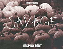 Savage Display Font
