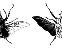 The Bugs