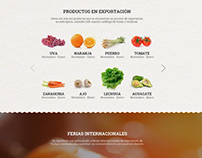 Diseño página web Agrofresh