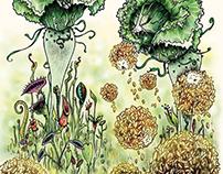 The Garden of Carnivorous Savoy Cabbage
