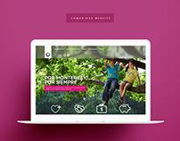 Fundación Comunidar, A.C. Website