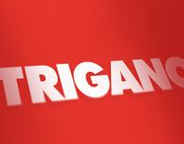 TRIGANO Catalog 2012-13