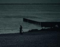 Polaroids-II