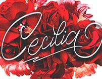 Cecilia Script FREE Font