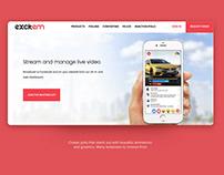 excitem website design