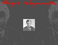 NigelWaymouth.com