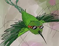 Colibri Aviador
