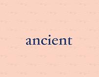 Ancient - Museum Exhibit Promotion