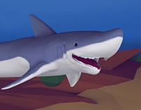 Shark In The River