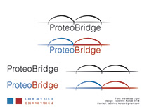 Proteo Bridge