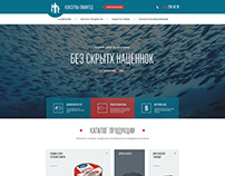 landing page for online store selling canned fish