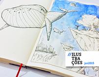 365 dias de Ilustração • Janeiro