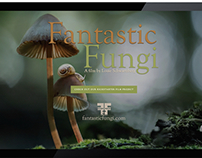 Website & Branding Project: Fantastic Fungi
