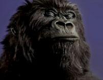 Cadbury Gorilla Face Replacement: VFX Breakdown