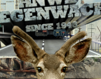 ANWB wegenwacht 65
