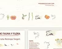Microambientes de fauna y flora
