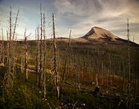 Greg Stroube Landscapes