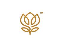 Cleopatra Magic Cream | Logo