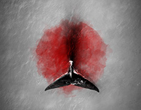 Japan resumes whale hunting