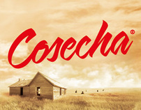 COSECHA - 100% All Natural Oils