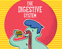 Science Visual Aids - Digestive System