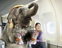 Elephant on a Plane
