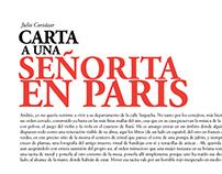 Carta a una señorita en paris- Julio Cortázar