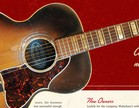 Acoustic Guitar feature on Regal Guitars
