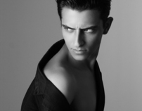 Homme model test