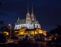 Cathedral of St. Peter and Paul in Brno