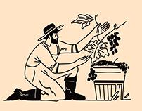 Art of Taste: Food Brand Illustrations
