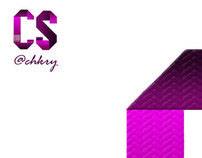 CHAKRI STUDIOS NEW DESIGN | CHAKRI REDDY