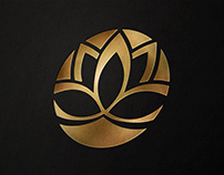 Lotus Medical Brand & Custom Site