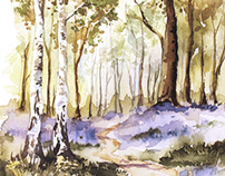 Woodland Watercolours