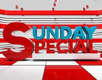 SUNDAY SPECIAL PROGRAM MONTAGE FOR NEWS INDIA JAIPUR
