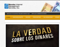 Mendez Internet Management Services Inc.