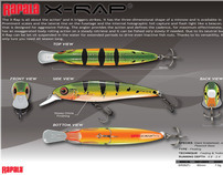 RAPALA VMC Fishing Lure Design Competition 2009