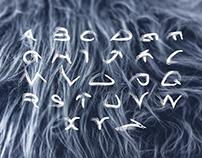 Lean   Typeface