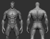 Male Anatomy Study