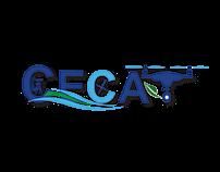 Creation de CECAT promotion de Magestry Graph